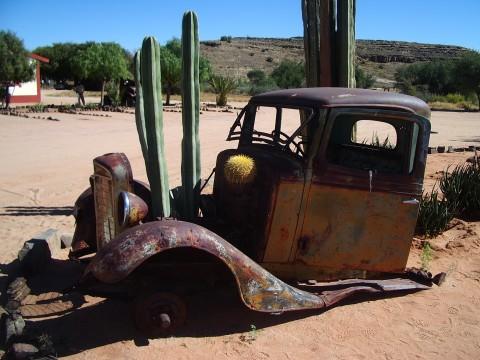 canyon-car-cactus